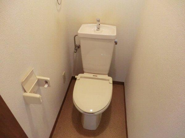 グリンビュー清水 102号室のトイレ