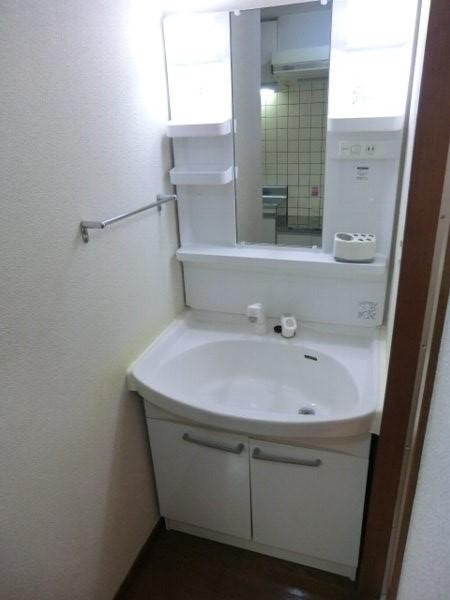 グリンビュー清水 102号室の洗面所