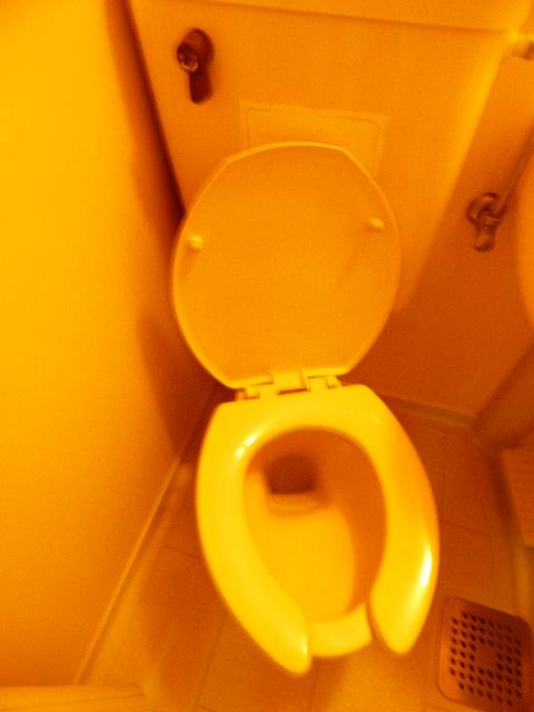 ハイツカメリア 102号室のトイレ