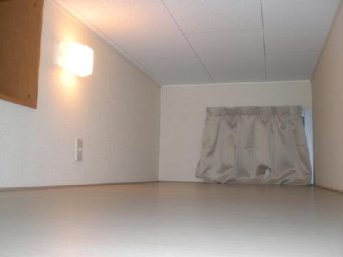 レオパレス桂Ⅱ 207号室のベッドルーム