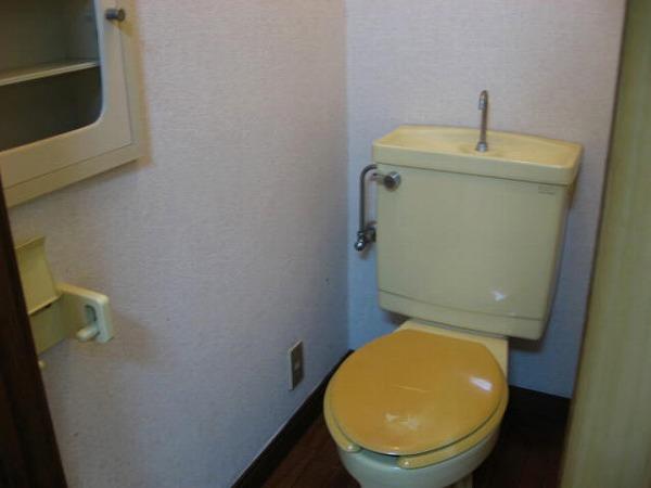 ドミュール代沢 105号室のトイレ