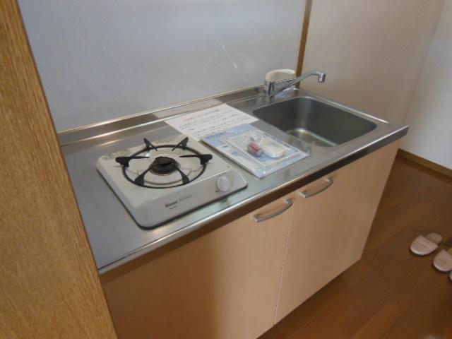 ラフォーレ新屋敷 102号室のキッチン
