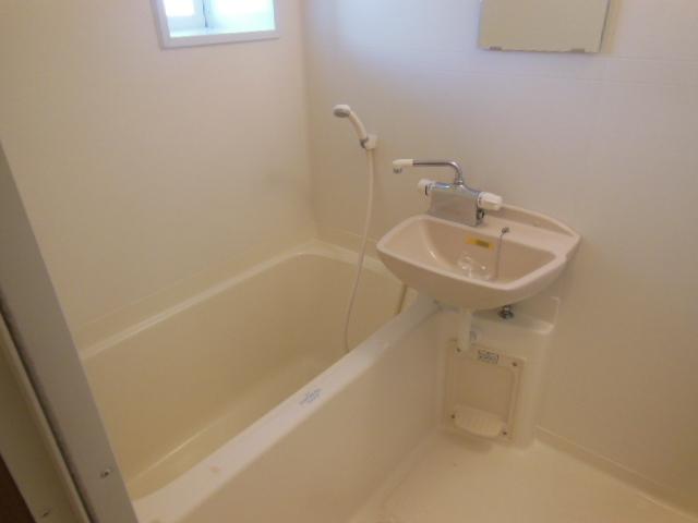 ラフォーレ新屋敷 102号室の風呂