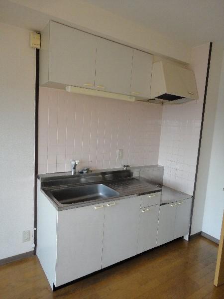 イーストロイヤル斉藤 505号室のキッチン