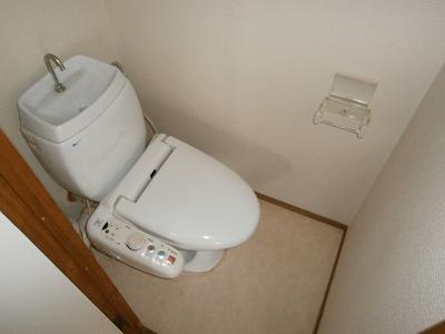 ビラージ・十塚 102号室のトイレ