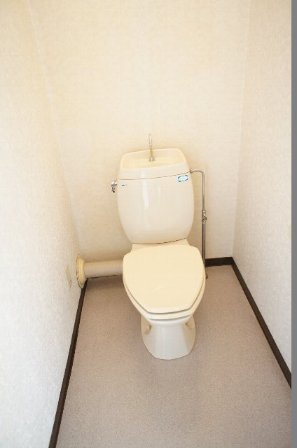 シェルブライト三番館 306号室のトイレ