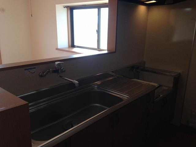 リーニエントN 4-B号室のキッチン