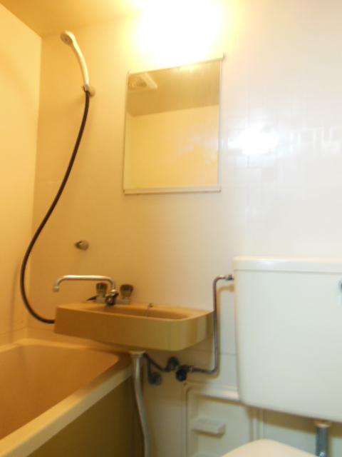 シャンポール三栄前山Ⅱ 105号室の洗面所