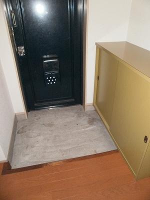 サンハイツ大豊 3-C号室の玄関