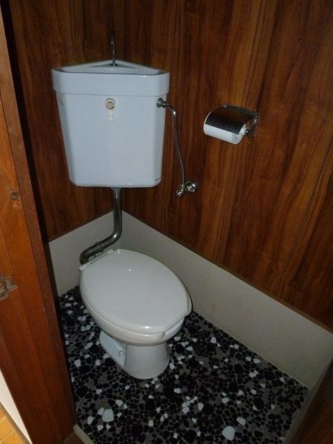 第1マンション龍 202号室のトイレ
