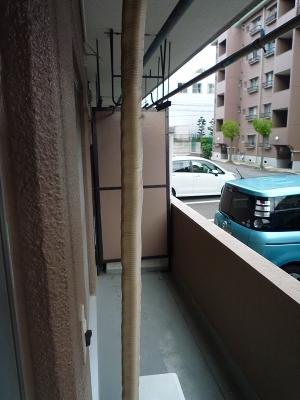 シャンボール豊田A 106号室のバルコニー
