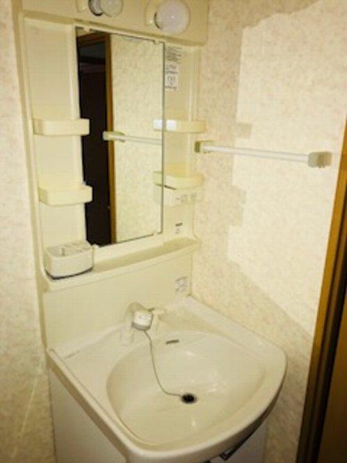 リベルテONE 302号室の洗面所