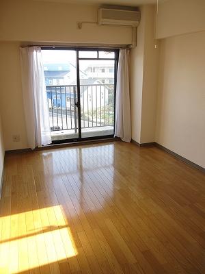 セントラルコート斎藤 306号室の景色