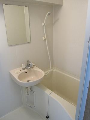 セントラルコート斎藤 306号室の風呂