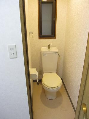 セントラルコート斎藤 306号室のトイレ