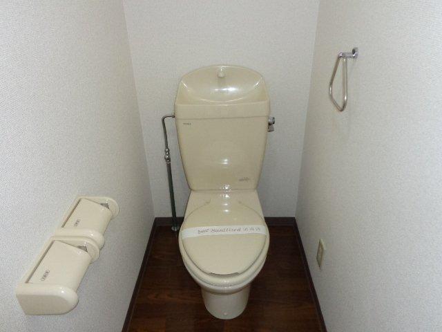 サンタプレイス岡崎 301号室のトイレ