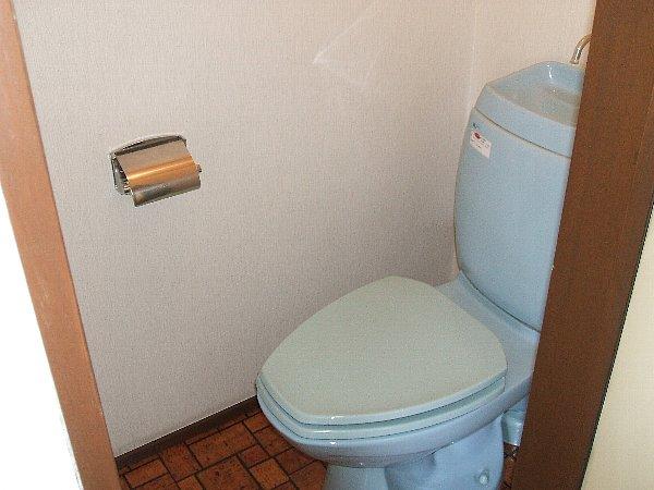 メゾン薗田ビル 302号室のトイレ