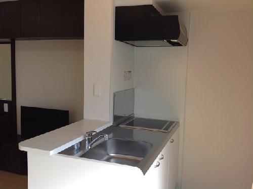 ミランダラピス 201号室のキッチン