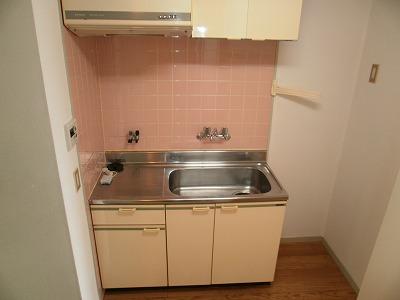 アイリス梅坪 305号室のキッチン