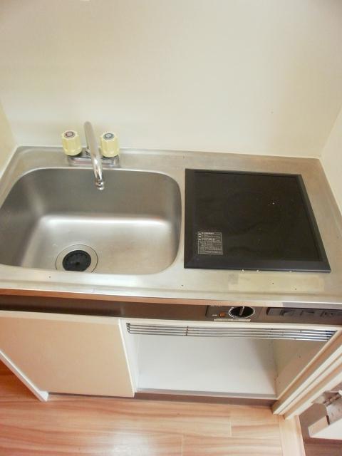 RX豊田 205号室のキッチン