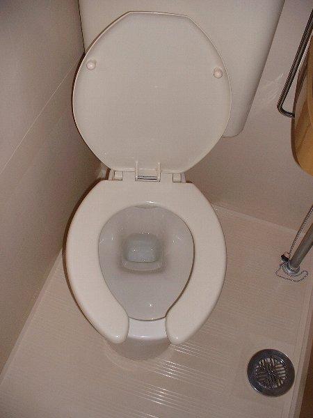 リード豊田 208号室のトイレ