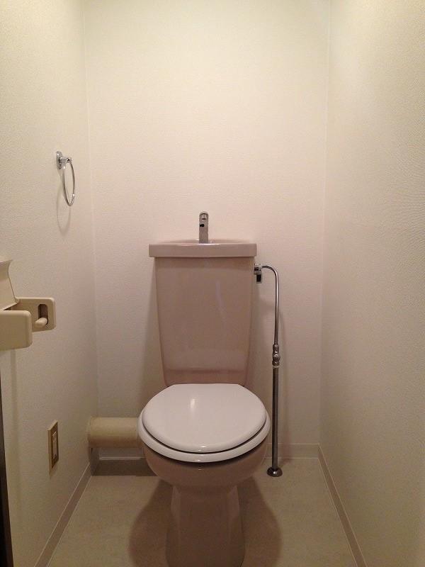 ルック神田 302号室のトイレ