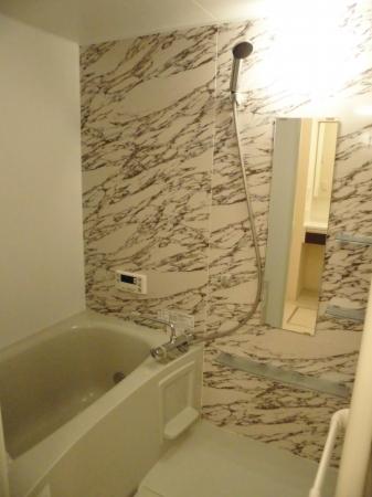 D-room大崎 203号室の風呂