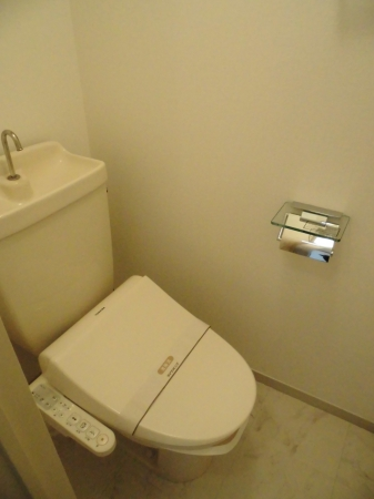 D-room大崎 203号室のトイレ