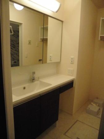 D-room大崎 203号室の洗面所