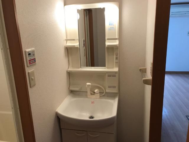フラワーヒルズ山ノ神 103号室の洗面所