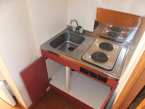 レオパレスフルールⅠ 202号室のキッチン