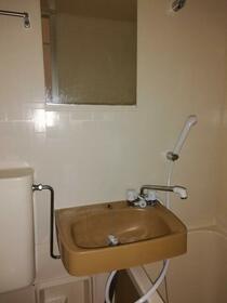 ホワイトビラハヤシ 201号室の洗面所
