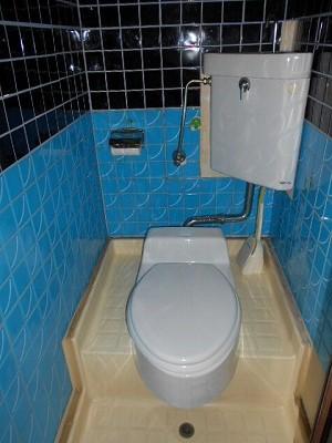 井川ハイツ 203号室のトイレ