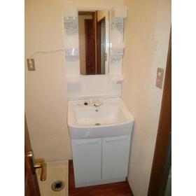ユトリロ神ノ郷 101号室の洗面所