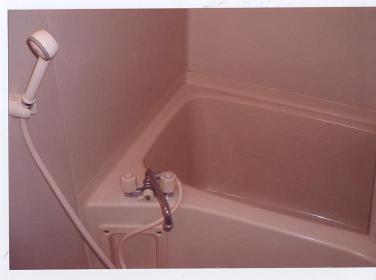 フェニックス鷺沼 105号室の風呂