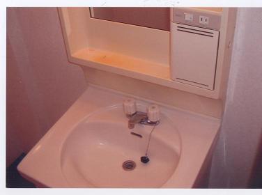 フェニックス鷺沼 105号室の洗面所