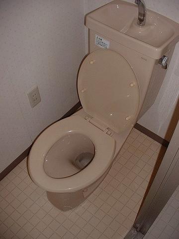 河上マンション 401号室のトイレ