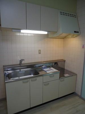 小坂プリンシア 501号室のキッチン