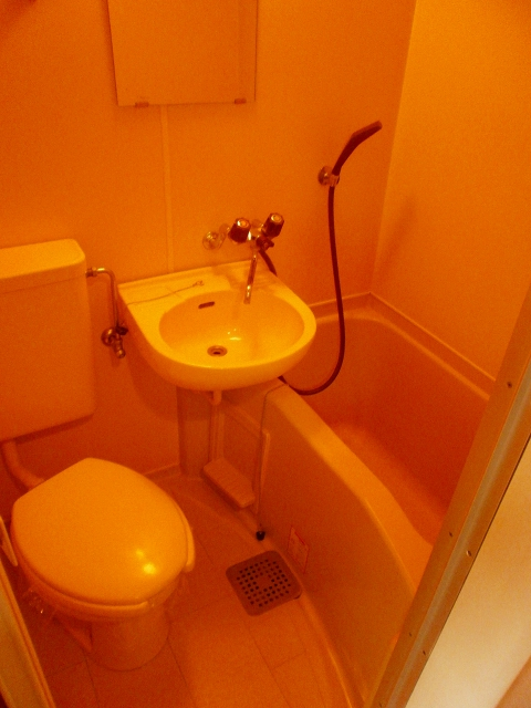 RX豊田 404号室の洗面所