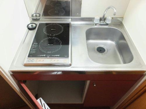 レオパレスミュニA 201号室のキッチン