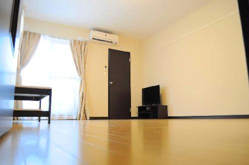 レオネクストエスベランサ 208号室のリビング