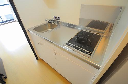 レオネクストエスベランサ 208号室のキッチン