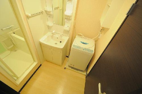 レオネクストエスベランサ 208号室の洗面所