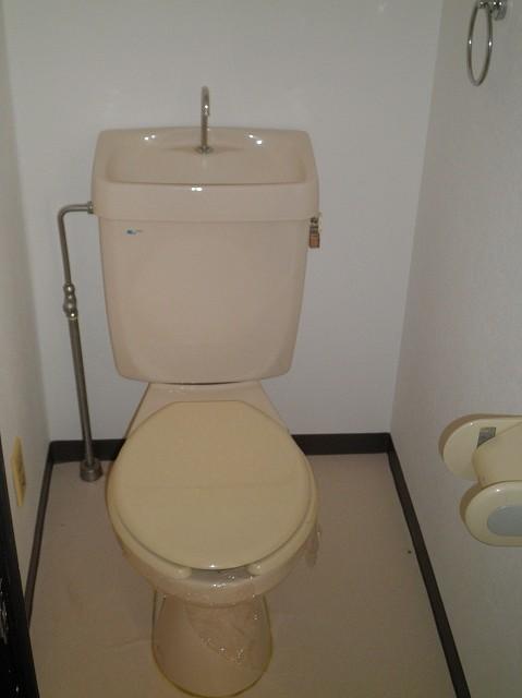 ボヌール新町 105号室のトイレ
