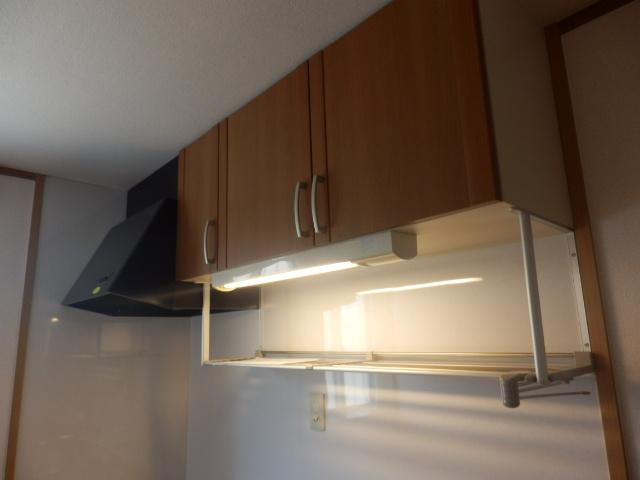 スタットアンクム B 101号室のキッチン