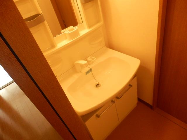 スタットアンクム B 101号室の洗面所