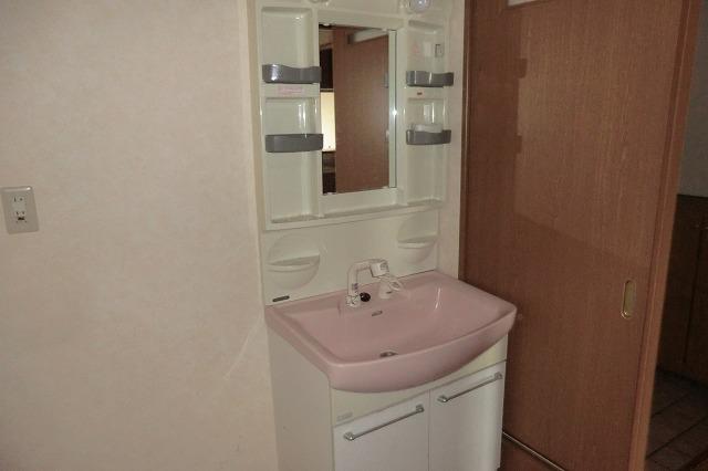 和泉乃郷参番館 203号室の洗面所