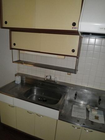 パープルマンション 202号室のキッチン