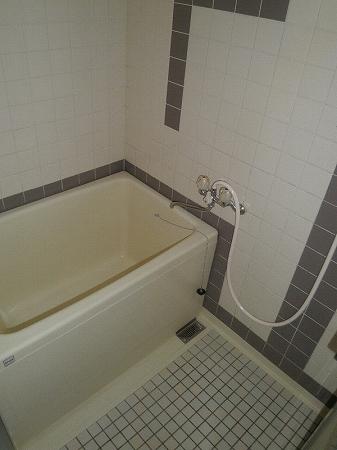 パープルマンション 202号室の風呂