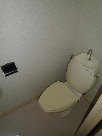 パープルマンション 202号室のトイレ